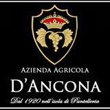 D'Ancona